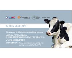 Экономика производства молока в условиях домохозяйства