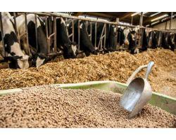 Важливість гранульованих кормів для тварин