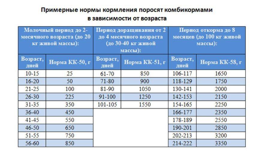 таблиця норми годування свиней